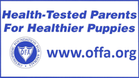 Health Tested Parents for Healthier Puppies